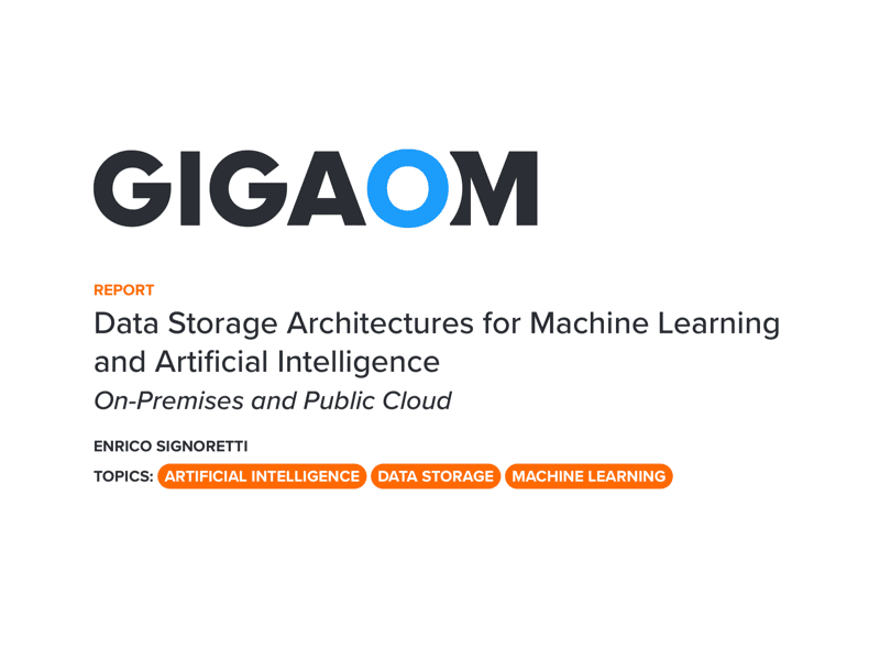 Data Storage Architectures for Machine Learning and Artificial Intelligence