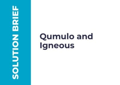 Partner Solution Brief: Qumulo and Igneous